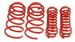 2010-2014 Mustang Lowering Springs