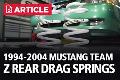1994-2004 Mustang Team Z Rear Drag Springs