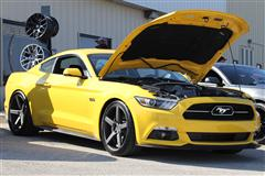 2015 Mustang TSB's and Recalls