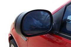 Ford Lightning Outer Door Mirror