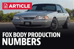 Fox Body Production Numbers