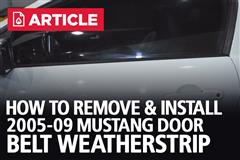 How To Remove & Install 05-09 Mustang Door Belt Weatherstrip