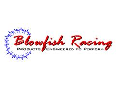 Mustang Blowfish Racing Parts
