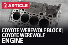 The Coyote Werewolf Block