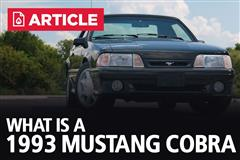What Is A 1993 Cobra?